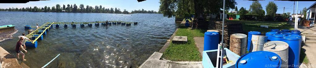 2016-05-22-Schwimmbahn-5.jpg