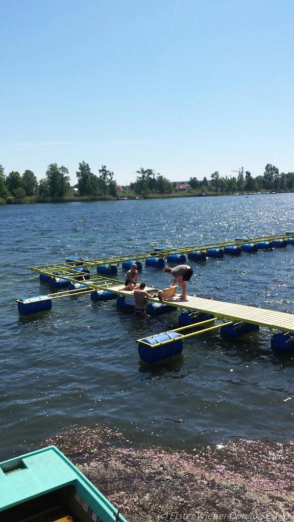 2016-05-22-Schwimmbahn-11.jpg